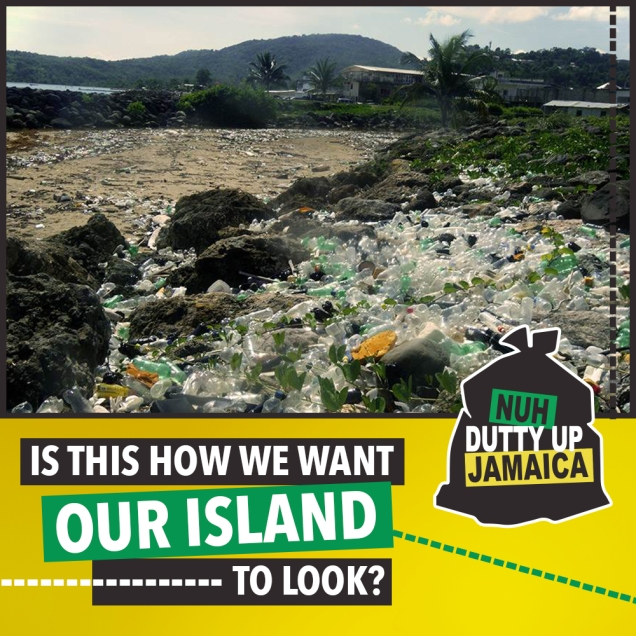 Is this how we want our island to look?